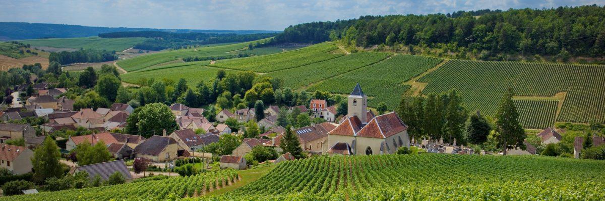 Cote des Bars Viviers-sur-Artaut village vignoble vert-(c)Didier-Guy